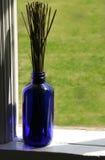 Lavendel-Stämme Stockbild