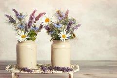 Lavendel & tusenskönor Royaltyfria Bilder