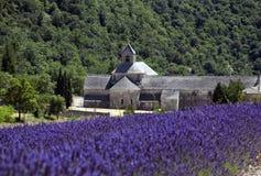 Lavendel und Abtei Lizenzfreies Stockfoto