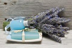 Lavendel und Hygienefelder. Stockbild