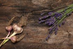 Lavendel und Knoblauch auf rustikalem Hintergrund Stockfotografie