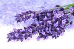 Lavendel und Salz Lizenzfreies Stockfoto