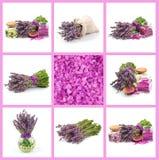 Lavendel uppsättning Arkivfoton