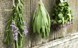 Lavendel, vis man och timjan på gammal trälantlig bakgrund arkivfoton