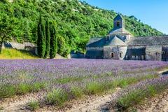 Lavendel vor dem abbaye de Senanque in Provence Stockfoto