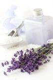 Lavendelanlage, Duschegel und bathsalt Stockbild