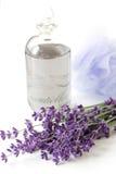 Lavendelanlage und -schmieröl Lizenzfreie Stockfotografie