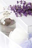 Lavendelanlage und -schmieröl im weißen Kasten Stockbilder