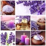 Lavendelbadekurortcollage lizenzfreies stockfoto