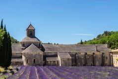 Lavendelblüte vor einer Abtei in Provence Frankreich Lizenzfreies Stockfoto