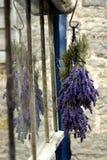 Lavendelbloem die in venster weerspiegelen Stock Afbeeldingen