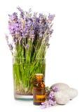 Lavendelbloemen en etherische olie Stock Afbeelding