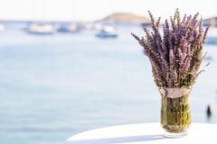 Lavendelblommor Royaltyfria Foton