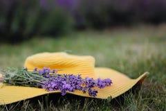 Lavendelblumen auf einem gelben Hut im Sommer in Ungarn stockfoto