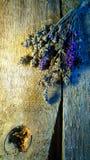 Lavendelblumenstrauß Lizenzfreies Stockfoto