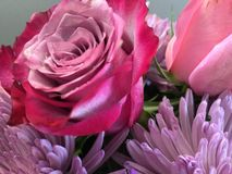 Lavendelboeket Stock Fotografie