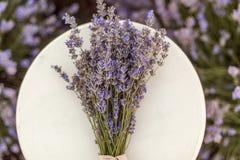 Lavendelboeket op een houten bank op lavendelgebied Stock Fotografie