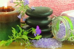 Lavendelbrunnsortterapi Arkivfoto