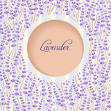 Lavendelcirkel Arkivbild