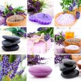 Lavendelcollage Royaltyfri Foto