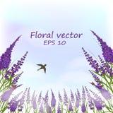 Lavendelfält i dimman stock illustrationer