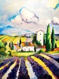 Lavendelfält i Frankrike, sommardag royaltyfri illustrationer