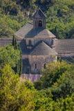 Lavendelfält med den Senanque kloster i Provence, Gordes, Frankrike Arkivbilder