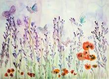 Lavendelfält med vallmo och fjärilar Arkivbild