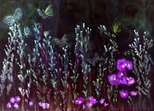 Lavendelfält med vallmo och fjärilar i natten Royaltyfri Foto