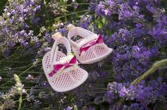 Lavendelfeld mit Babyschuhen auf einem Stamm Stockbild
