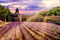 Lavendelfeld in Senanque-Kloster, Provence, Frankreich Stockbilder