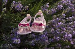 Lavendelfeld und Babyschuhe Lizenzfreie Stockfotos