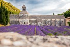 Lavendelfelder mit Senanque-Kloster in Provence, Gordes, Frankreich lizenzfreies stockbild