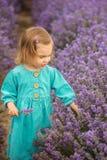 Lavendelflicka Royaltyfri Foto