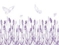 Lavendelgräns royaltyfri illustrationer