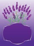 Lavendelinbjudankort Royaltyfri Fotografi