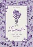 Lavendelkaart vector illustratie