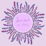 Lavendelkader Stock Afbeelding