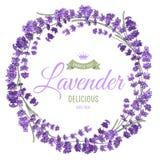 Lavendelkroon Royalty-vrije Stock Afbeeldingen