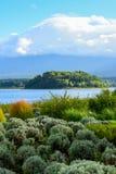 Lavendellantgården i Oishi parkerar, sjön Kawaguchiko Arkivbild