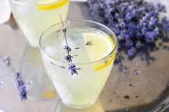 Lavendellemonad, uppfriskande drink arkivbilder