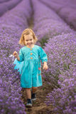 Lavendelmädchen Stockfotografie