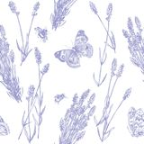 Lavendelmodell vektor illustrationer