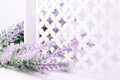 Lavendelniederlassung auf einem weißen Hintergrund Stockfotografie