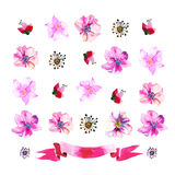 Lavendelornamenten stock illustratie
