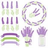 Lavendelsatz Lizenzfreie Stockfotografie