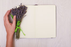 Lavendelskrivbord på åtlöje för bästa sikt för bakgrund upp Öppna sketchbooken anteckningsbok Royaltyfri Foto
