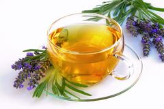 Lavendeltee Lizenzfreies Stockfoto