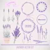 Lavendeluppsättning vektor illustrationer