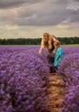 Lavendelzonsondergang Royalty-vrije Stock Foto's